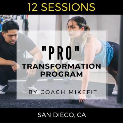 Pro-Transformation Program ($90 per session)