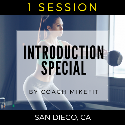 Special Introductory Training Session w/Mike