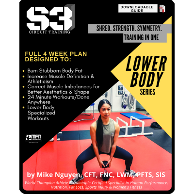 S3 CIRCUIT TRAINING PLAN - LOWER BODY (HOME)