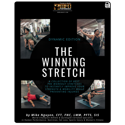 THE WINNING STRETCH - Dynamic Edition Guide