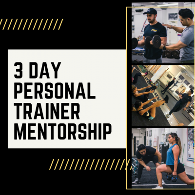 3- Day Personal Trainer Mentorship (Coming Soon)
